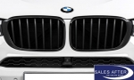 BMW M Performance X4 F26 Front grille in black