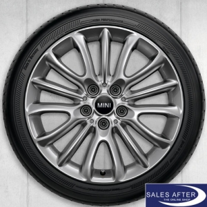 RDC Radsatz MINI F54 Net Spoke 519 + Dunlop
