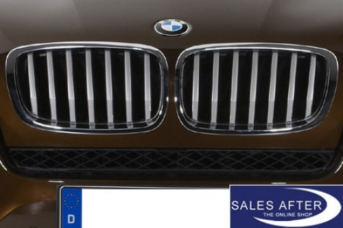 Salesafter The Online Shop Bmw X6 E71 Facelift Front Grille In